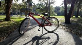 Bike Riding Bike Summer Leisure Bicycle Nature