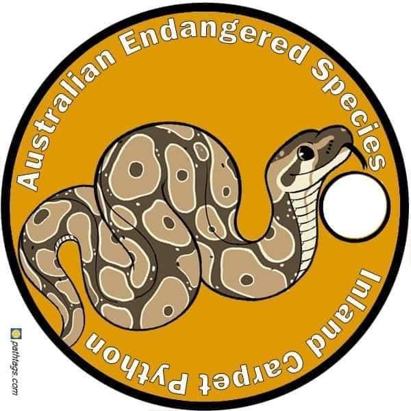 python_1620602921113